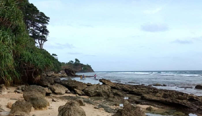 a natural wonder beach