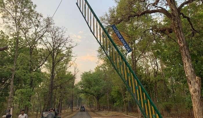 thrilling experience in safari zone