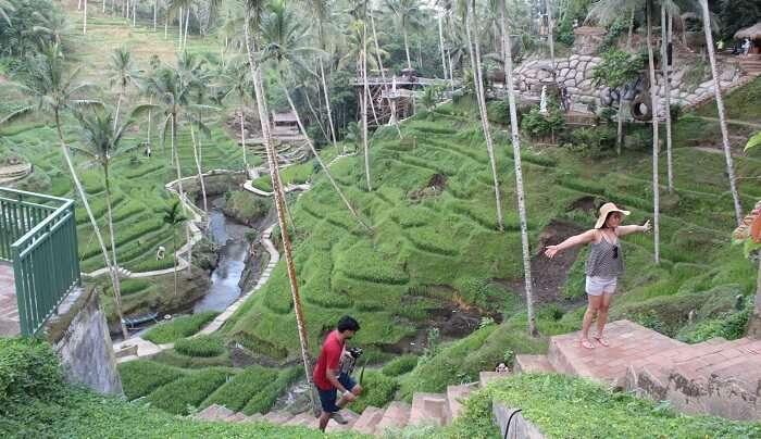 in ubud village