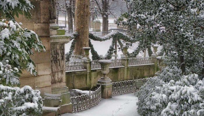 Luxembourg Gardens View