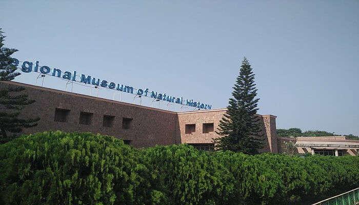 Regional Museum Of Natural History Odisha