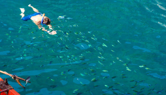 Taste The Thrill Of Snorkeling