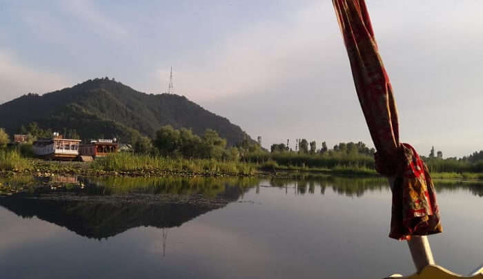 dal lake view