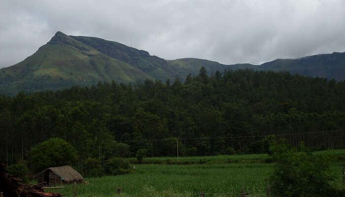 Kemmanagundi south india