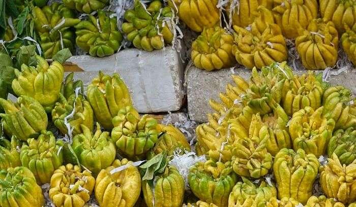 budhas hand fruit