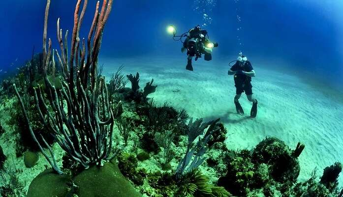 enjoyable for scuba diving