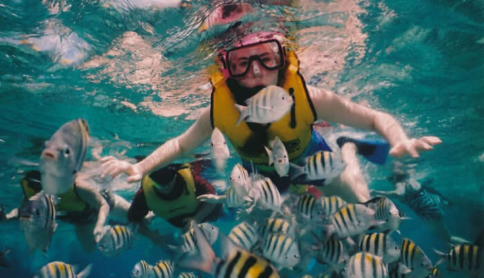 Enjoying snorkelling in water