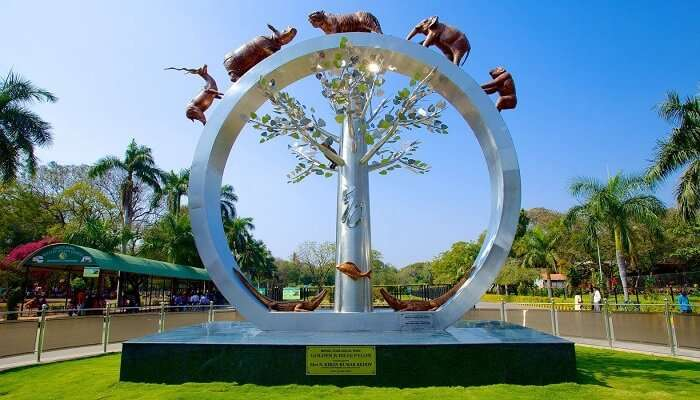 Best Time To Visit Nehru Zoological Park