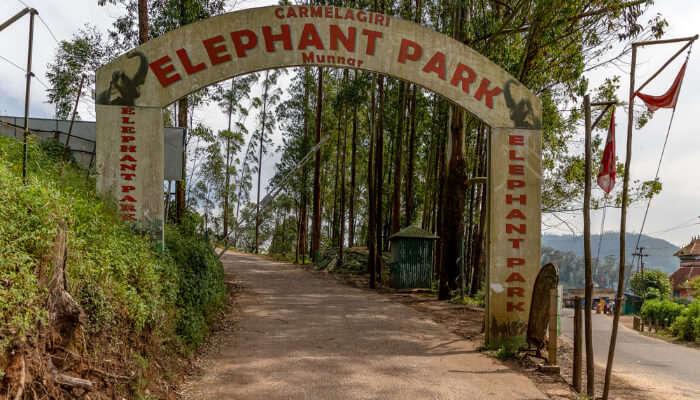 Elephant Park in Munnar