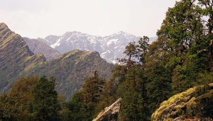 Chopta Mountains