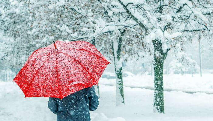 A girl in the snowfall