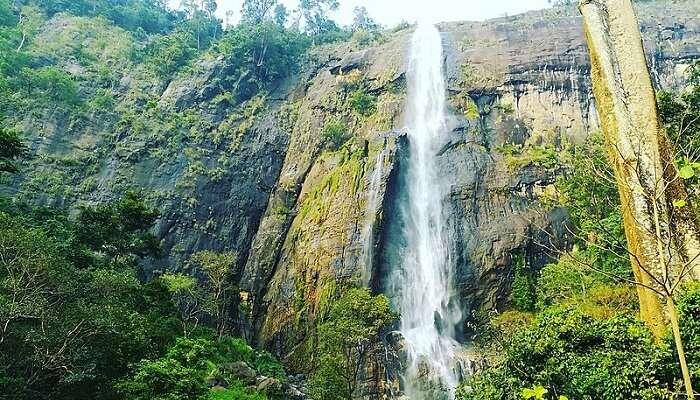 Diyaluma Falls ella