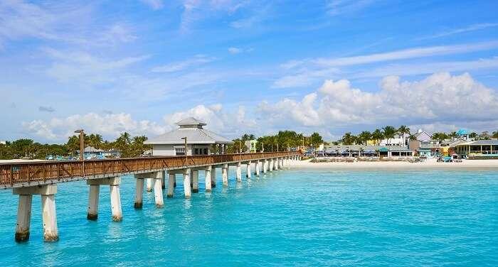 Go dolphin cruising on Fort Myers beach
