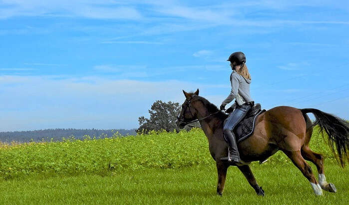 Horse riding is one of the unique things to do in Pachmarhi