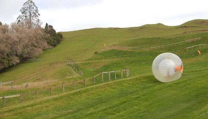 Horse Riding and Zorbing