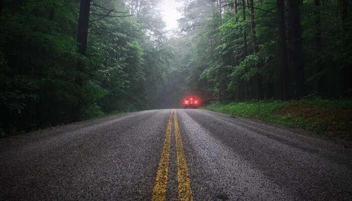 Road to Pawna Lake