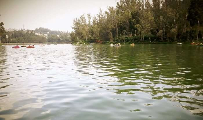 beautiful attractions of Ooty lake