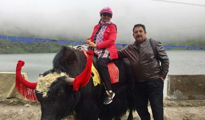 sitting on yak