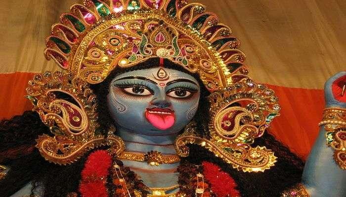 Kali View