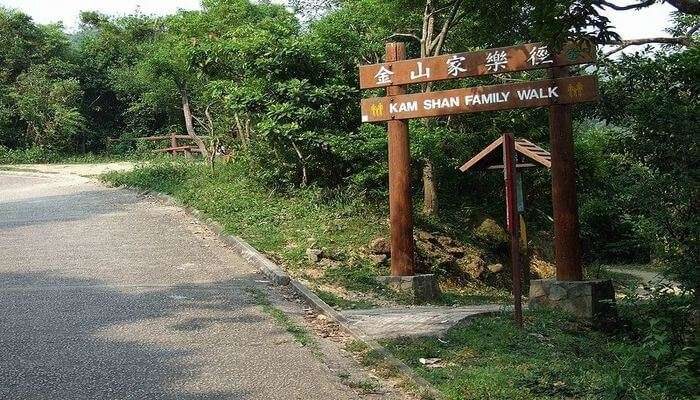 Kam Shan Country Park in Hong Kong