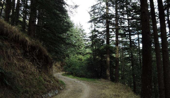 Quiet Route