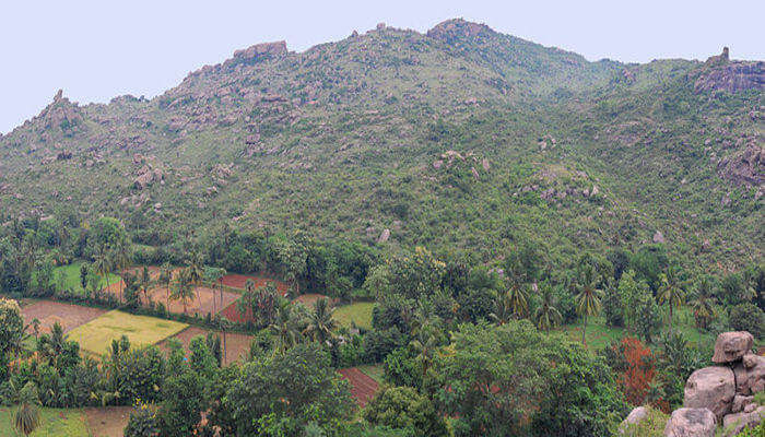 Mountain Hills in Vellore