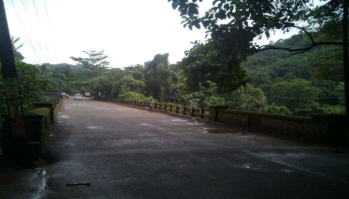 route toward pathanamthitta