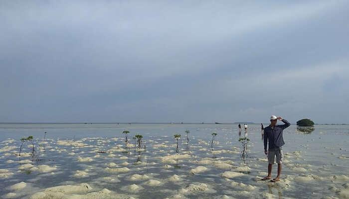 Pulau Pari Near Jakarta