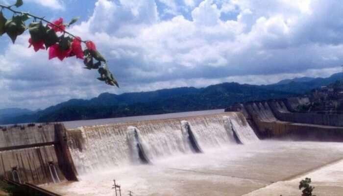 Ramganga Dam View