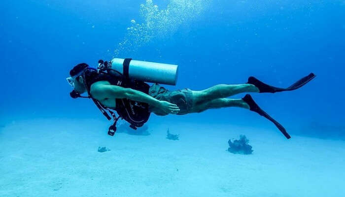 Scuba Diving in Water