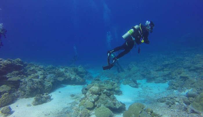 Doing scuba diving