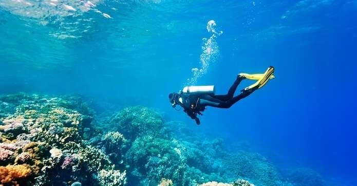scuba diving hub for underwater adventure