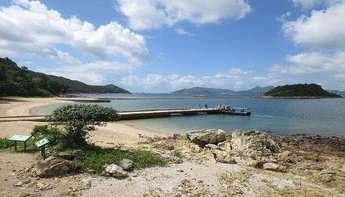 Sharp Island View