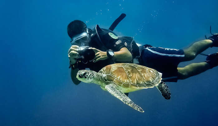 Experience Snorkelling