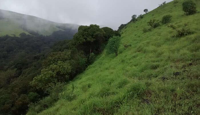 Trekking Area