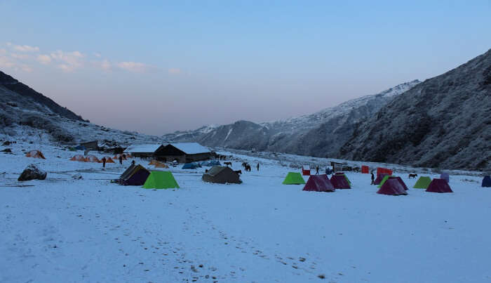 Base Camp Trekking