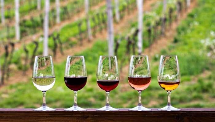 Taste The Wines At Mykonos Vioma Organic Farm
