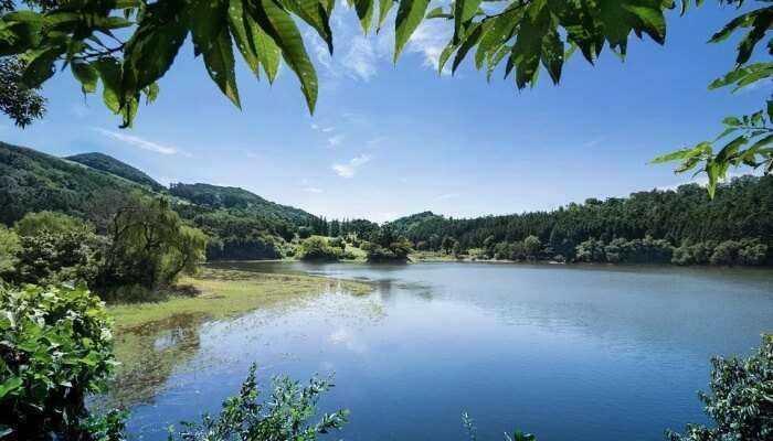 Thajangi Reservoir in Lambasingi