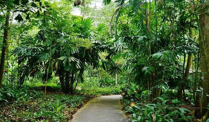 multiple trails to explore