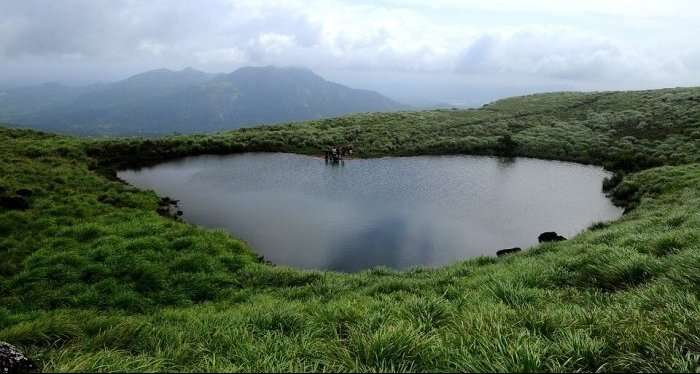 view of lake and lush green hills in wayanad