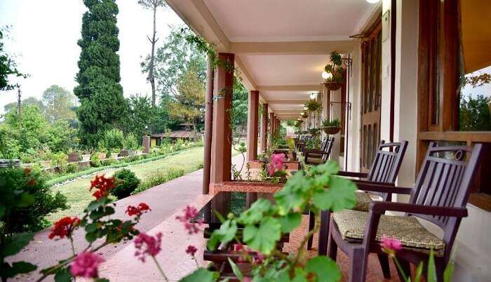 wonderful lavish green homestay