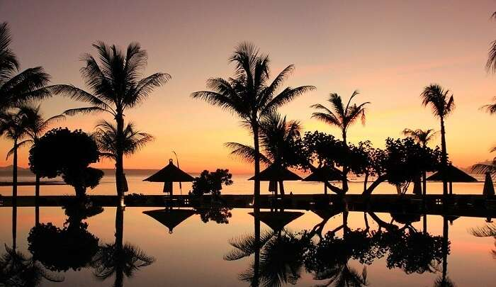cover - Bali In January