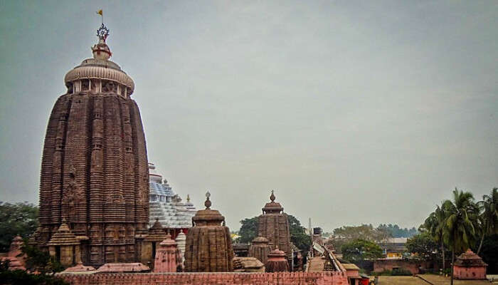 Puri Temple View