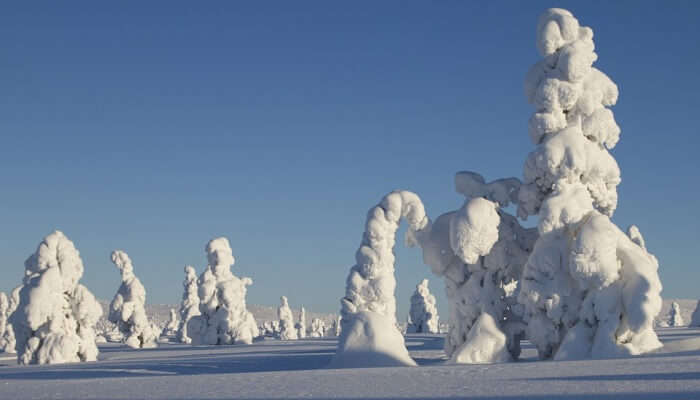 snowfall in Finland