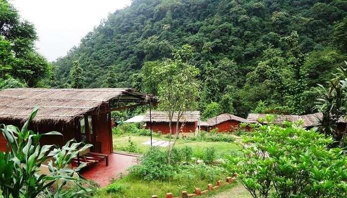 An Eco Yoga Habitat