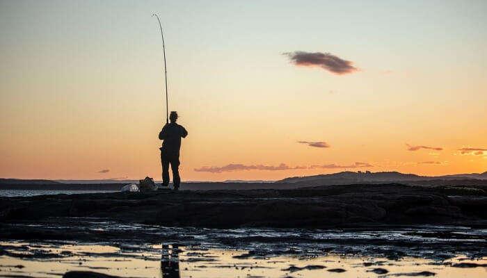 Angling Or Fishing
