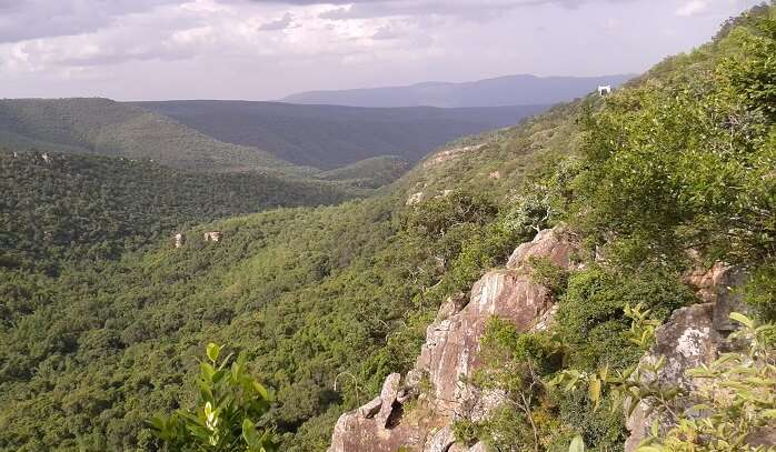 Nature Site