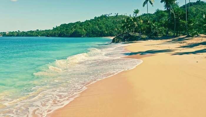Beach At Tiger Island