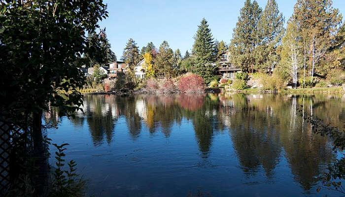 Beautiful View in Oregon