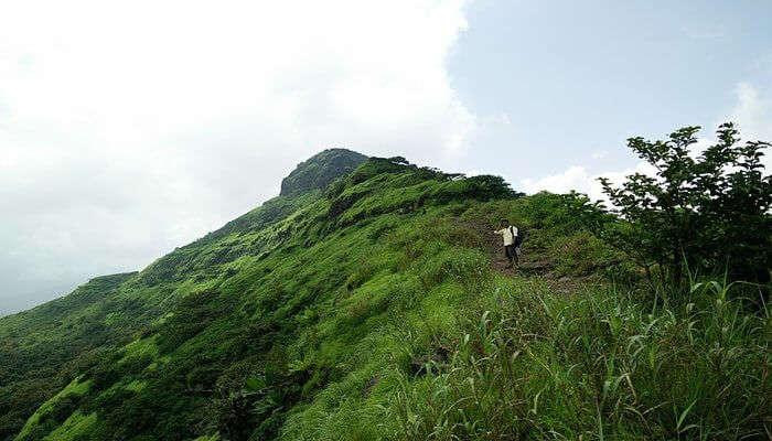 Best Time For Paragliding In Kamshet